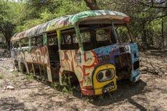 公共汽车、森林和街道画 免版税库存照片