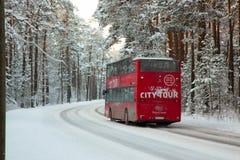 公共汽车在森林 免版税图库摄影