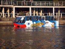 公共汽车城市高雄新的s游泳 库存图片