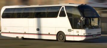 公共汽车执照乘驾浏览 免版税库存图片