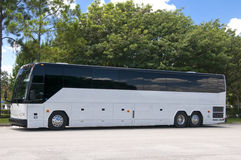 公共汽车新的白色 免版税库存图片