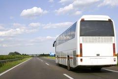 公共汽车白色 库存图片