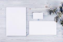 公司本体模板,与干燥花的文具在软的浅兰的木板 为烙记,图表设计师p嘲笑  库存照片