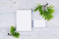 公司本体模板,与绿色叶子的文具在软的浅兰的木板 嘲笑为烙记,图表设计师 免版税库存照片