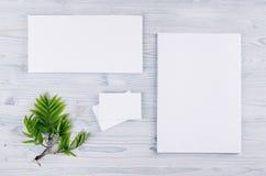 公司本体模板,与绿色叶子的文具在软的浅兰的木板 免版税库存图片