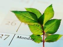 公司的绿色日程表(CSR) 免版税图库摄影