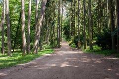 公园ÅtÄ› pà ¡ nka 免版税库存照片