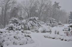 公园下雪 库存图片