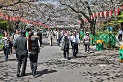 公园东京 免版税图库摄影