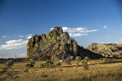 公园全国Isalo,马达加斯加 图库摄影