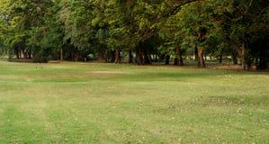 公园公共 图库摄影