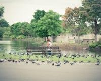公园公共 免版税图库摄影