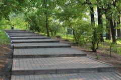 公园台阶 免版税库存图片