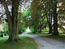 公园和树木园Seeburgpark在克罗伊茨林根 库存照片