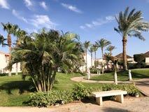 公园和石道路和美丽的阿拉伯回教白色石大厦,村庄,反对背景o的房子的看法 免版税库存照片