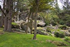 公园和自然在Skudeneshavn 库存图片
