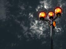 公园在与橙色光的晚上 免版税库存图片