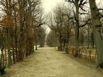 公园在中心城市 免版税库存图片