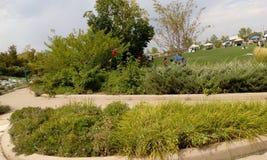 公园在丹佛 库存图片