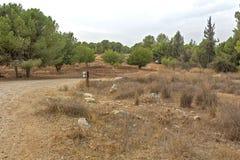 公园在以色列 samaria 免版税库存照片