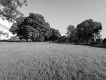 公园在克利夫顿在黑白的布里斯托尔 库存照片