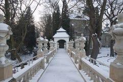 公园在冬天。 图库摄影
