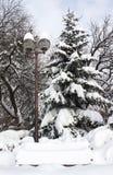 公园在冬天 免版税库存照片