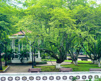 公园在卡利,哥伦比亚 库存照片
