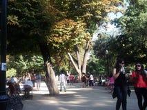 公园在圣地亚哥,智利 库存照片