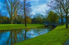 公园在城市 库存照片