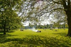 公园在夏天 库存图片