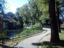 公园在夏天 免版税库存图片