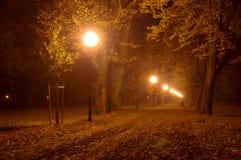 公园在晚上。 免版税库存图片