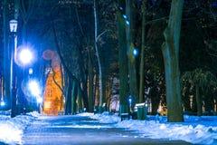 公园在晚上在冬天 免版税库存图片