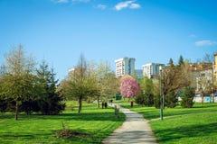 公园在有春天绽放的萨拉热窝 库存照片