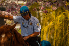公园在杰斐逊纪念品附近的警察 免版税库存照片