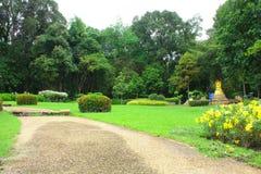 公园在泰国 免版税库存图片