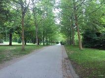 公园在温哥华 库存图片