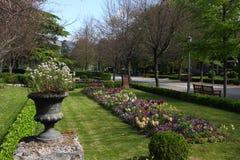 公园在潘普洛纳 免版税图库摄影