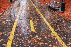 公园在秋天雨中 库存图片