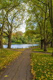公园在秋天 库存照片