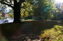 公园在秋天 库存图片
