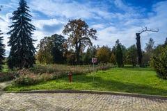 公园在罗兹,波兰 免版税图库摄影