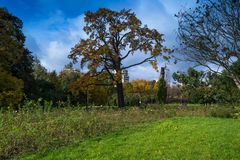 公园在罗兹,波兰 免版税库存照片