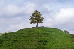 公园在罗兹,波兰 库存照片