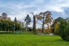 公园在罗兹,波兰 免版税库存图片
