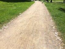 公园在阳光下 库存照片