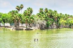 公园在马塔莫罗斯,墨西哥 免版税库存照片