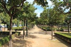 公园在马拉加 免版税图库摄影