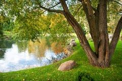 公园在10月 库存图片